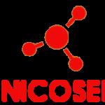 Ingenico Server – eService RESTful API – Wprowadzenie